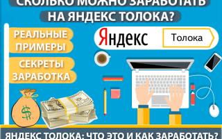 Метод заработка на Яндекс Толока — что это, как и сколько можно заработать, отзывы