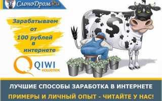 Как я зарабатываю в интернете от 100 рублей в день